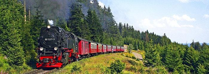 Familienidylle in Harz: 3-6 Tage im Ferienpark inkl. Frühstück, 1xMenü, Rodelfahrt & Mehr von August-September ab 79€