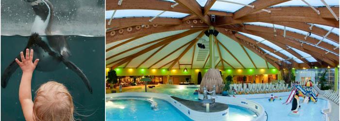 Spreewald-Wasserspaß: 2-6 Nächte im 4*Hotel mit Frühstück, 1×3-Gänge-Menü & Ticket für Spreewelten ab 89€