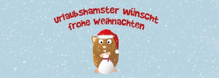 Frohe Weihnachten & ein frohes Fest!