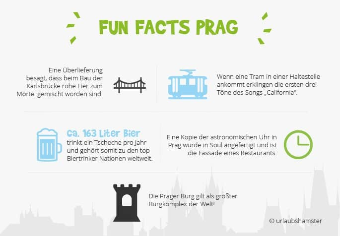 fun-facts-prag-urlaubshamster
