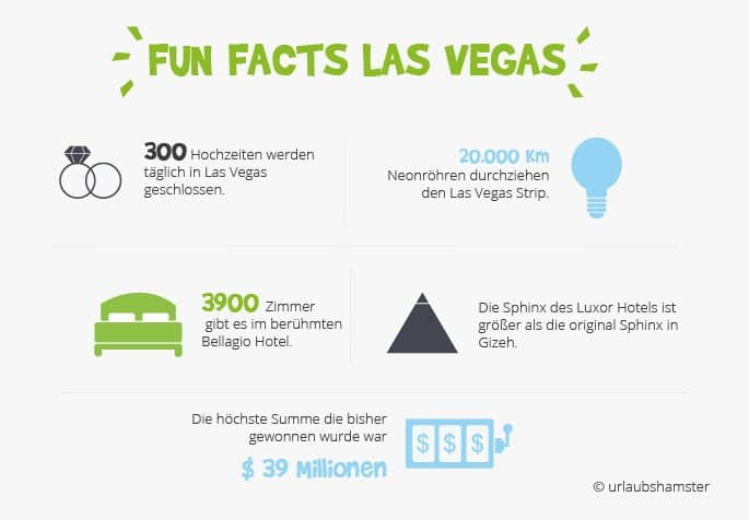 fun-facts-lasvegas-urlaubshamster