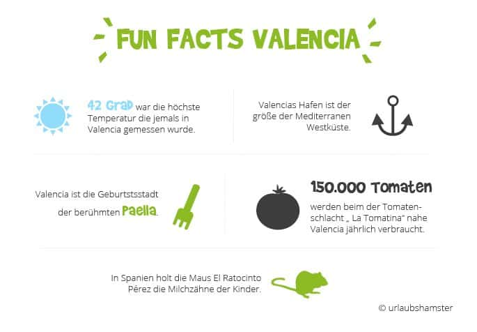 fun-facts-valencia-urlaubshamster