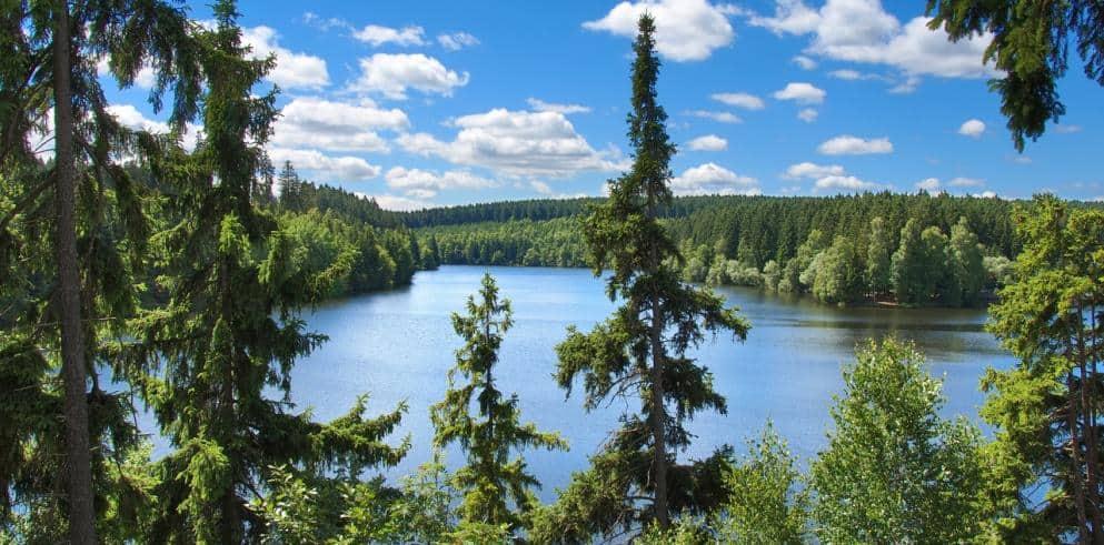 Harz Urlaub Landschaft