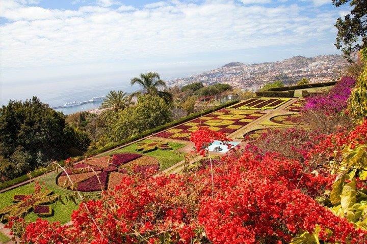 Madeira Urlaub Blumenmeer