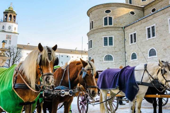 Advent in Salzburg Pferde