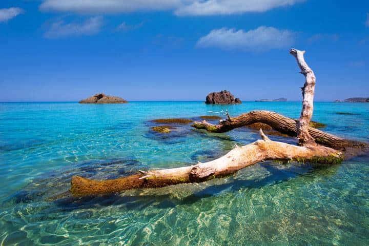 Ibiza Urlaub Meer